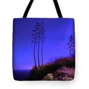 Point Fermin In Infrared Tote Bag
