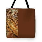 Point Lobos Abstract 106 Tote Bag