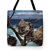 Point Lobos Rocks And Branches Tote Bag