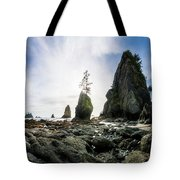 Point Of The Arches 4 Tote Bag