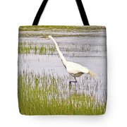Point Pinole Regional Shoreline 4 Cropped Tote Bag