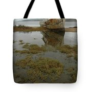 Point Reyes Reflection Tote Bag