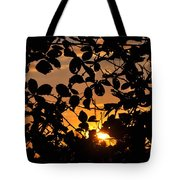 Pointed Shadow Tote Bag