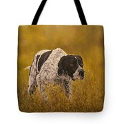 Pointer...to The Point....... Tote Bag
