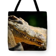 Pointy Teeth Tote Bag