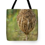 Poised For Winter Tote Bag