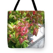 Poison Ivy Comes A Creeping Tote Bag