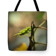 Poisonous Insect Larva Tote Bag