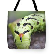 Pokemon In Real Caterpie Tote Bag
