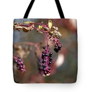 Pokeweed Berries 20121020_129 Tote Bag
