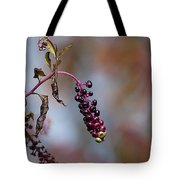 Pokeweed Berries 20121020_134 Tote Bag