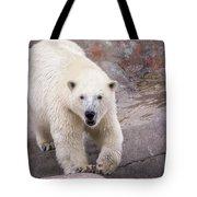 Polar Bear Prowl  Tote Bag