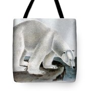 Polar Bear (ursus Maritimus) Tote Bag