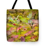 Polish Forest 3 Tote Bag