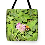 Pollen Collection Tote Bag