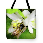 Pollen - Covered - Bee Tote Bag