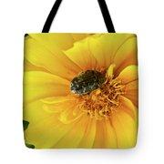 Pollen Feeding Beetle Tote Bag