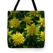 Poly Chroma Tote Bag