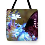 Polydamas Swallowtail Butterfly Tote Bag