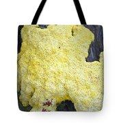 Polymyxa Slime Mold Tote Bag