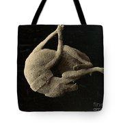 Pompeii: Plaster Cast Tote Bag