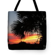 Ponce Inlet Florida Sunset Tote Bag