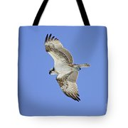 Ponce Osprey 1 Tote Bag