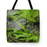 Pond Abstract I Tote Bag