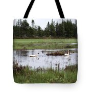 Pond And Swans Tote Bag