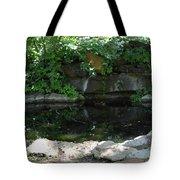 Pond At Twu 2 Tote Bag
