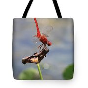Pond Ballerina Tote Bag