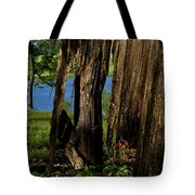 Pond Fragments Tote Bag