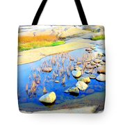 Do You Know The Secret Of The Pond Tote Bag