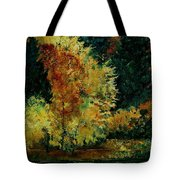 Pond In Fenffe Tote Bag