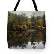 Pond In Jackson Tote Bag