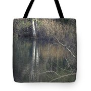 Pond In The Hollow Tote Bag