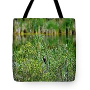 Pond On Cherry Creek Study 2 Tote Bag