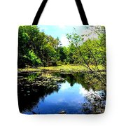 Pond On The Delaware Gap Tote Bag