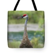Sandhill Crane With Pond Tote Bag