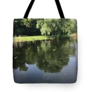 Pond With Ducks Tote Bag