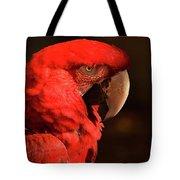 Pondering Parrot Tote Bag
