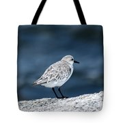 Pondering The Storm Tote Bag