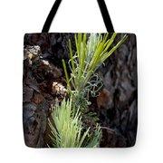 Ponderosa Pine 8 Tote Bag