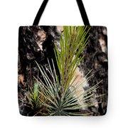 Ponderosa Pine 9 Tote Bag