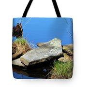 Pondside Stone Tote Bag