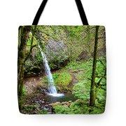 Ponytail Falls, Oregon Tote Bag