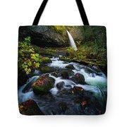 Ponytail Falls With Autumn Foliage Tote Bag