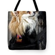 Pooch In The Pouch Tote Bag