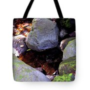 Pool In The Rainforest Tote Bag