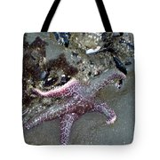 Poor Little Starfish Tote Bag